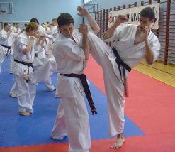 V Seminarium Kumite - Wałcz 2007
