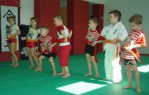 Przedszkolaki w Dojo