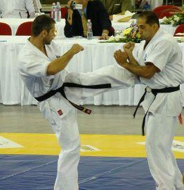 Otwarte Mistrzostwa Świata Kyokushin Karate Budapeszt 2009