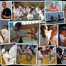 W 2010 roku członkowie klubu wzięli udział w 7 szkoleniach. Ćwiczyliśmy w dzień i w nocy, na lądzie i w wodzie... a sensei Artur Wilento sparował z 4-krotnym Mistrzem Świata zawodowców w formule K-1 - Ernesto Hoostem!