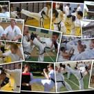 W 2011 roku wzięliśmy udział w 8 różnych szkoleniach, ćwiczyliśmy walkę w półdystansie, poznawaliśmy CrossFit, dwukrotnie odwiedzaliśmy Japonię, a smoki dodawały nam siły i odwagi ;)
