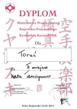 MWKP PFKK Solec Kujawski 23.02.2013 dyplom kata