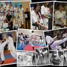 W 2013 roku braliśmy udział w 7 turniejach karate i 1 kick-boxingu. Najwięcej tytułów zdobyła Weronika Krajewska.
