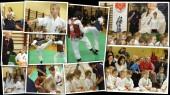 W 2014 roku nasz klub zorganizował turniej skierowany do najmłodszych karateków, który cieszył się dużym zainteresowaniem kibiców 🙂