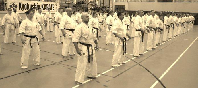 Seminarium Kumite - Wałcz 2018
